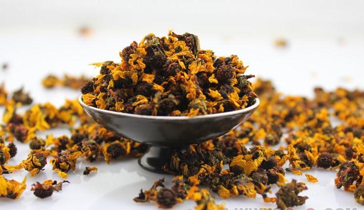 雪菊花茶功效与作用有哪些?它与普通菊花的区别是什么?