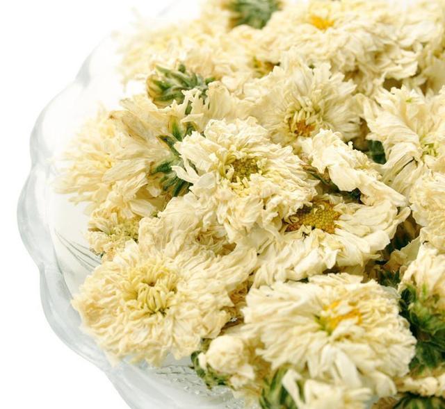 黄山贡菊功效是什么?怎么买到上好的黄山贡菊?