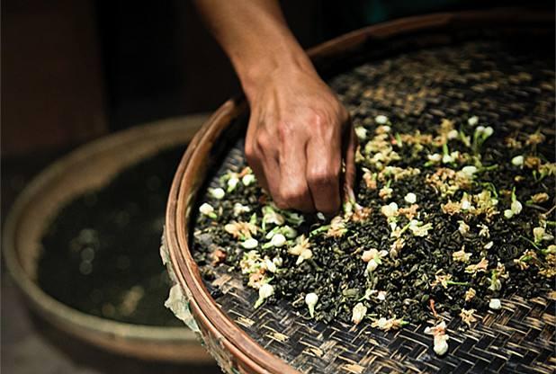 茉莉花茶最新价格,多少钱一斤