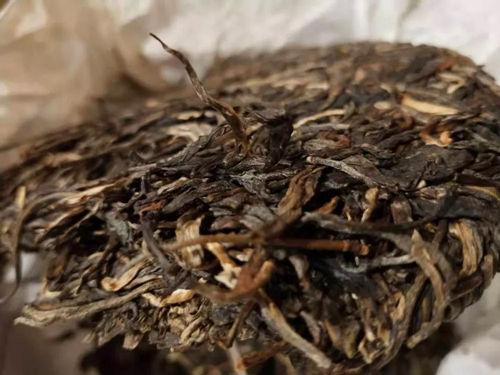 2021年云南下关沱茶价格多少钱一斤