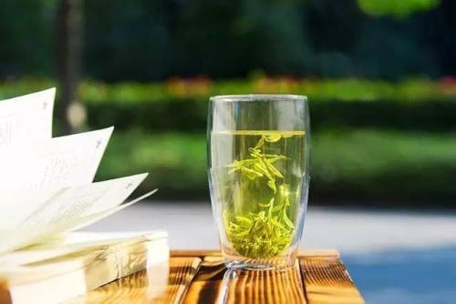 西湖龙井属于什么茶