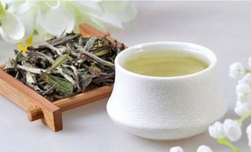 2021年白牡丹茶最新价格多少钱一斤