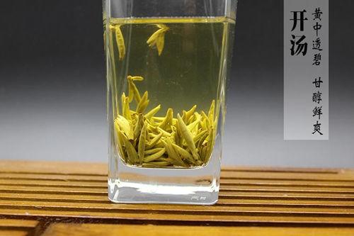 君山银针属于什么茶?